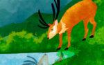 El Ciervo y su Reflejo
